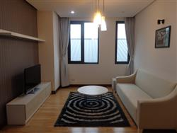 Hight quality 02 bedrooms apartment rental near Opera  House (Vn)