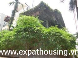 Modern House, 4 Bedroom, in Dang Thai Mai, Tay Ho, Ha Noi