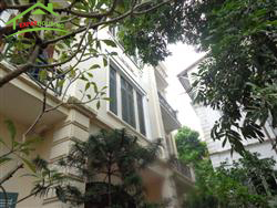 Nice house 4 bedrooms in Xom Chua, Dang Thai Mai, Tay Ho, Ha Noi